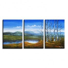 Obraz, ručne maľovaný, 150x70 cm, 22299