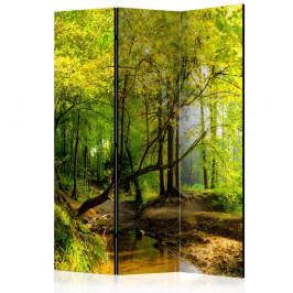 Paraván Forest Clearing Dekorhome 135x172 cm (3-dielny)