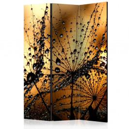 Paraván Dandelions in the Rain Dekorhome 135x172 cm (3-dielny)