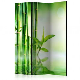 Paraván Green Bamboo Dekorhome 135x172 cm (3-dielny)