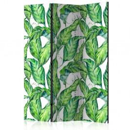Paraván Long Leaves Dekorhome 135x172 cm (3-dielny)