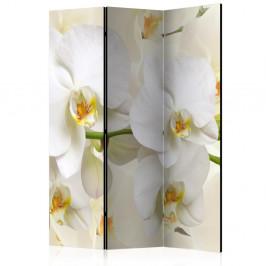 Paraván Orchid Branch Dekorhome 135x172 cm (3-dielny)
