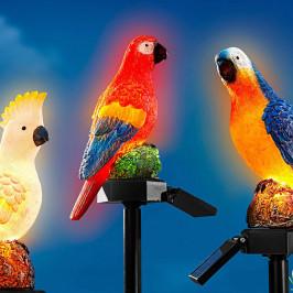 Solárne zápich Papagáj Egon