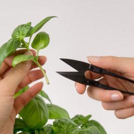 Véritable mini nožnice na zber byliniek