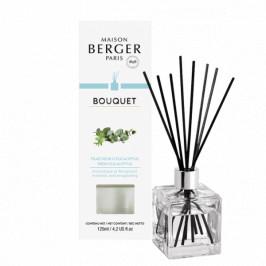 Maison Berger Paris aróma difuzér Cube, Čerstvý eukalyptus 125 ml