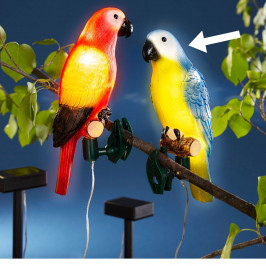 Solárny papagáj Fred