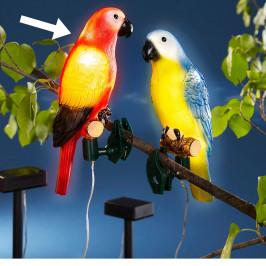Solárny papagáj Gustav
