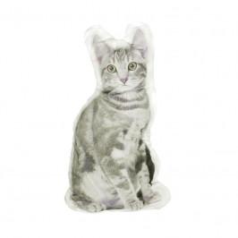 Forbyt, Fotovankúš, 3D Mačička